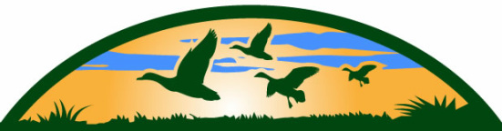 Ducks flying logo